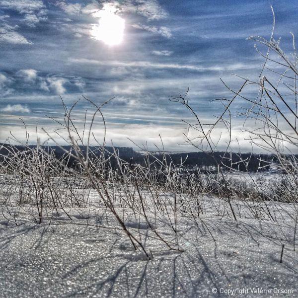Hutterite colony view