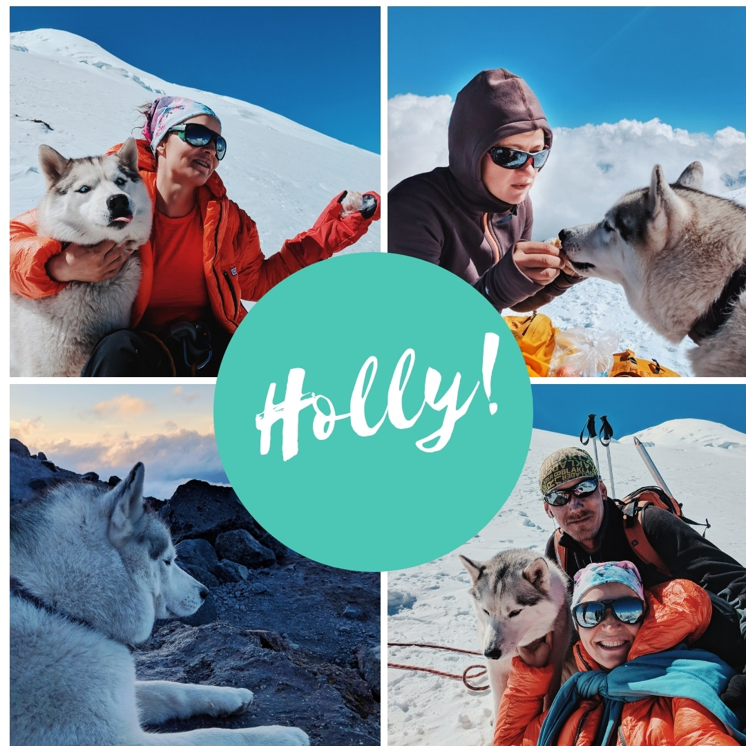 holly husky elbrus orsoni