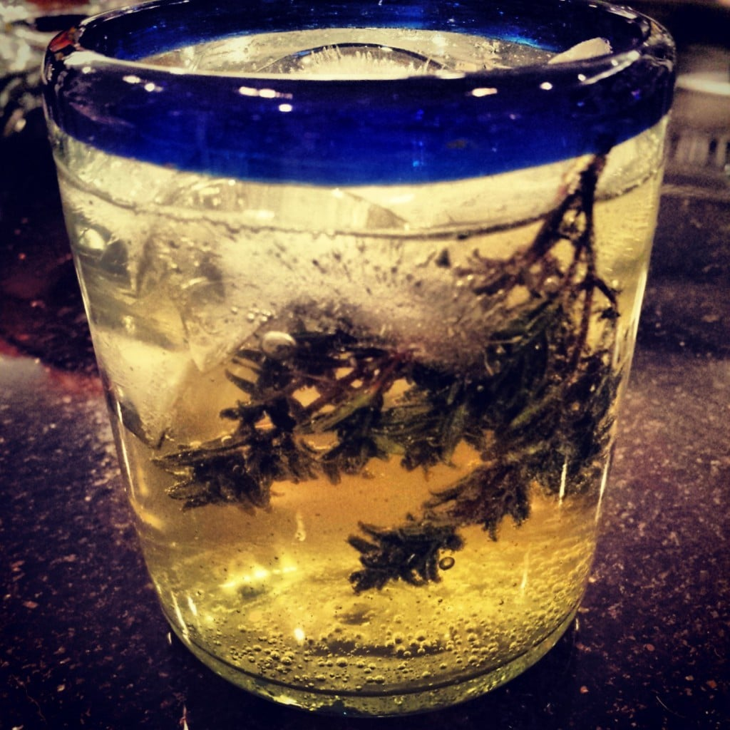 boisson anti nausée