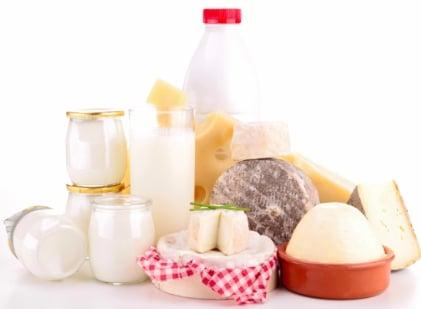 Dairy LeBootCamp