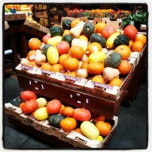 LeBootCamp Pumpkin