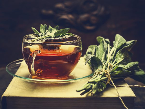 tea infusion LeBootCamp