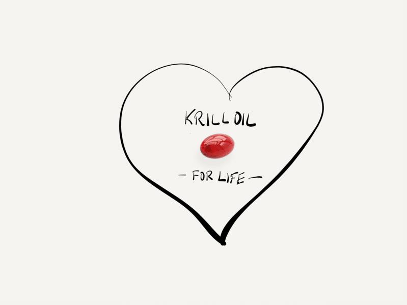 krill_lebootcamp_orsoni
